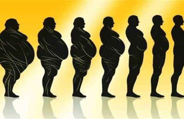 چاقی و لاغری