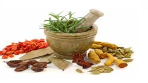 گیاهان دارویی تقویت کننده سیستم ایمنی